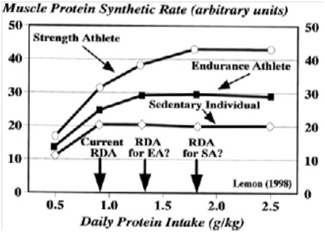 Protein Intake: Why 1g/lb is a Myth - JMax Fitness