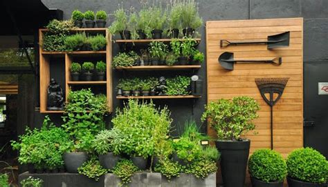 small space veggie gardening tips eco outdoor