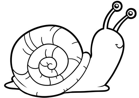 snail coloring page wanda luthman s children s books