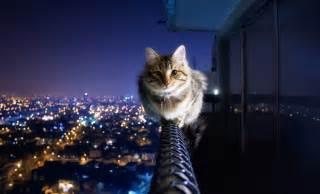 Guy Jumps Off Balcony by Onirik L Idiot Du Village Global 20