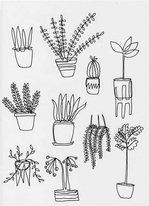 """The Ten Easiest Houseplants to Keep Alive"" mercedestabish"