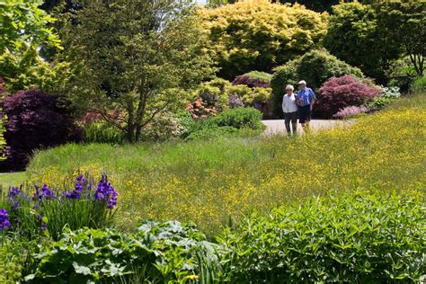 english gardens tour incl hton court flower show