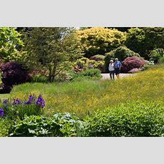 English Gardens Tour Incl Hampton Court Flower Show