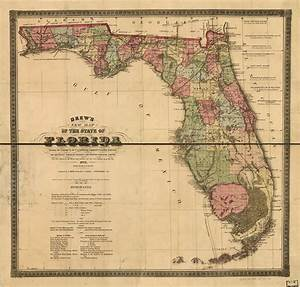 Drew U0026 39 S New Map Of The State Of Florida  Showing The