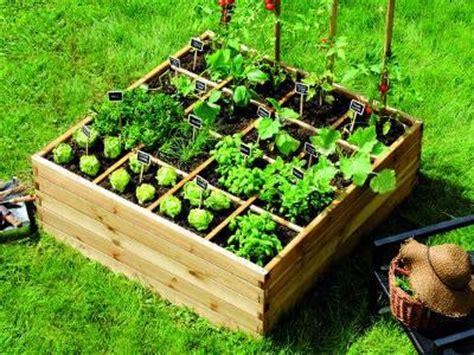 que planter dans potager que planter dans potager