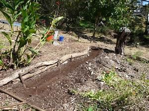 Jardins potagers sans labour for Jardin sans labour