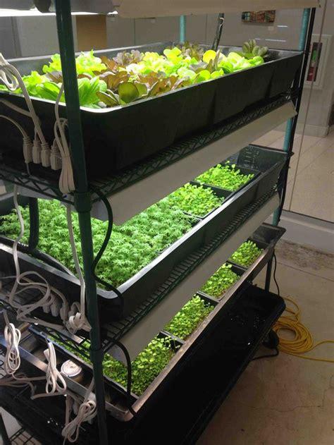 diy home farming kit aquapnics organic hydroponics