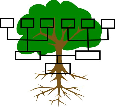 Clipart Pictures Templates Family Tree Template Png Family Tree Clip At Clker Vector Clip