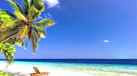 Unter Palmen am Meer!° - YouTube