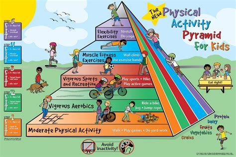 physical activity pyramid for http www foodpyramid 976 | 44f6304f79f9569cbdd9f2714e5fe061