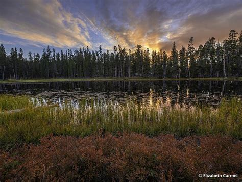 The Medium Format Landscape Outdoor Photographer