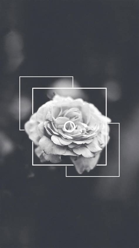 gray aesthetic wallpapers