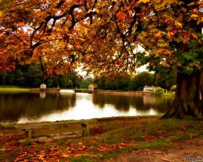 Autumn Wallpapers Fall Nature Desktop Colors Fanpop