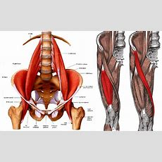 Some Reasons Why You Should Stop Stretching Your Hip