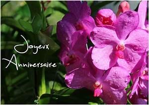 images gratuites anniversaire fleurs With chambre bébé design avec bouquet de fleurs anniversaire amie