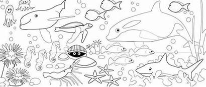Coloring Sea Pages Under Colouring Printable Clipart