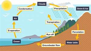 Can U Show Me Water Cycle Diagram With Transportation Precipitation Condensation Evaporation