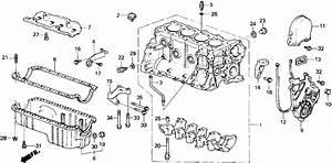 97 Honda Accord Lx Exhaust Diagram