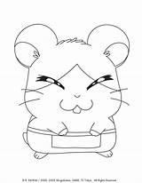 Viz Printables Official sketch template