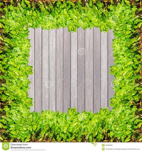 Gray Wood Floor by Dark Wood Texture Background Plank Panel Timber And Green
