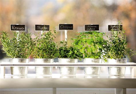 Kräutergarten Küche Diy by Obi Balkon Und Beetberater Infos Zu Balkonblumen