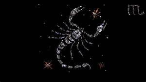 Scorpio Zodiac - Wallpaper, High Definition, High Quality ...