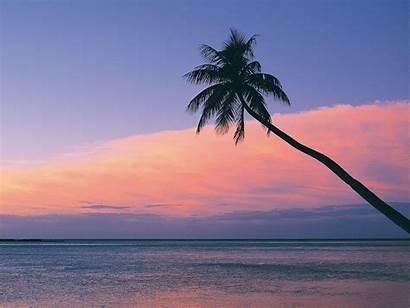 Sunset Fiji Desktop Wallpapers Nature Pink Kerala