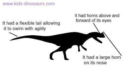 ceratosaurus facts  kids