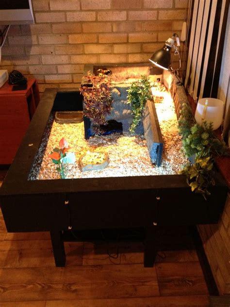 ideas  tortoise table  pinterest tortoise