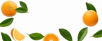 Citrus Magic Fruit Leaves Odor Fresheners There