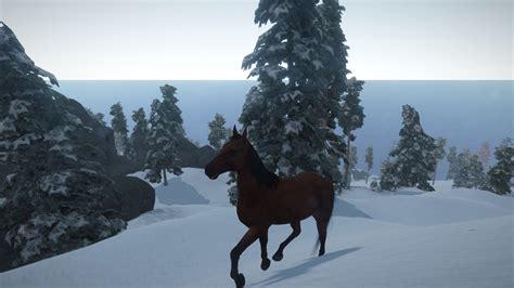 horses rust horse