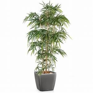 Plante Exterieur Artificielle : trouver facilement une plante artificielle pas cher ~ Teatrodelosmanantiales.com Idées de Décoration