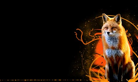 Zorro Animal Wallpaper - zorro wallpaper wallpapersafari