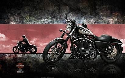 Harley Davidson Iron 883 Screensavers Wallpapers Xl883n