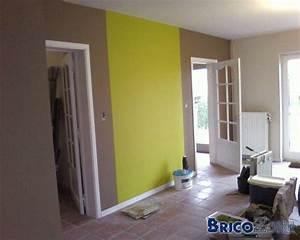 revgercom couleurs peintures murales idee inspirante With charming nuancier couleur peinture murale 8 14 idees couleur taupe pour deco chambre et salon