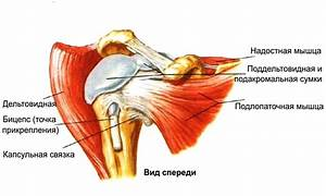 Препараты для лечения артроз плечевого сустава