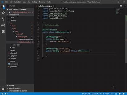 Java Code Coding Visual Studio Microsoft Intellicode