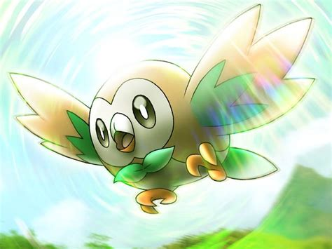17 Best Images About Starter Pokemon On Pinterest