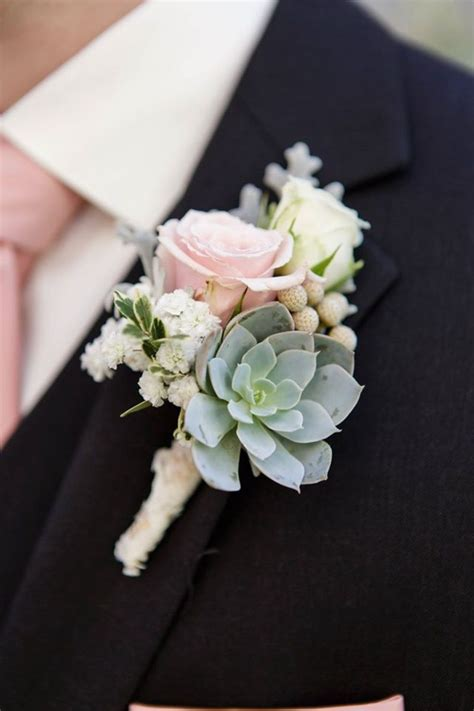 grooms rose boutonniere roses  succulent pink green