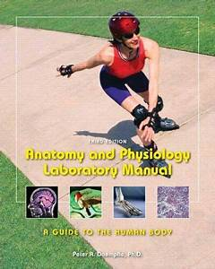 Anatomy  U0026 Physiology Laboratory Manual  A Guide To The