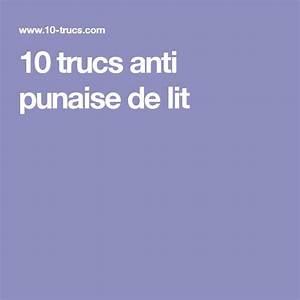 Kapo Punaise De Lit : best 25 anti punaise de lit ideas on pinterest punaises ~ Dailycaller-alerts.com Idées de Décoration