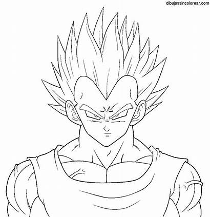 Vegeta Colorear Dragon Ball Dibujos Imagenes Goku