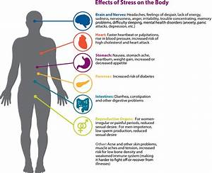 cbd effects on blood pressure