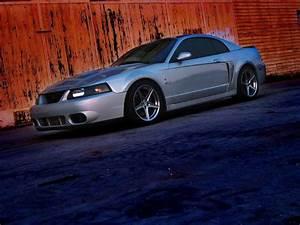 03 Mustang Cobra
