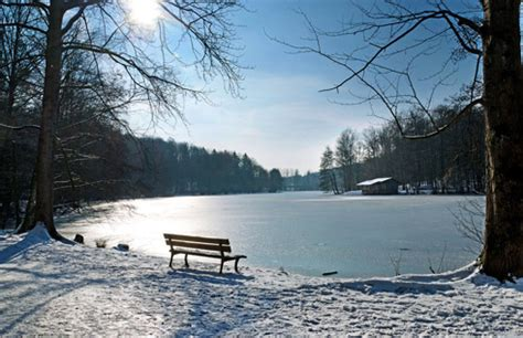 winter  germany  cold season  pictures goethe