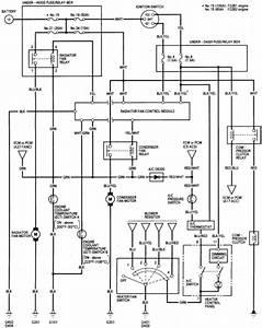 Honda Ridgeline Wiring Diagram