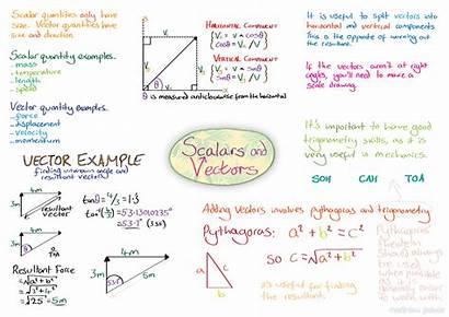 Scalar Physics Quantities Vectors Scalars Notes Ocr