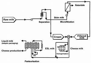 Process Diagram Skim Milk