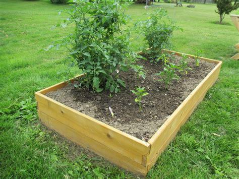 cedar raised garden bed kit raised garden bed kit 3 x6