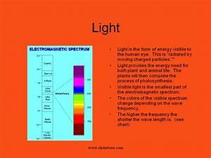 Visible Light Spectrum Presentation Physics